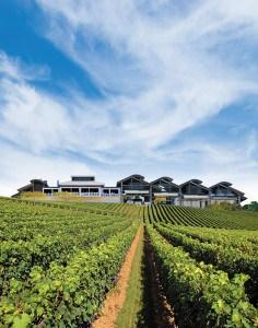 Sirromet-Winery- Vineyards-hero