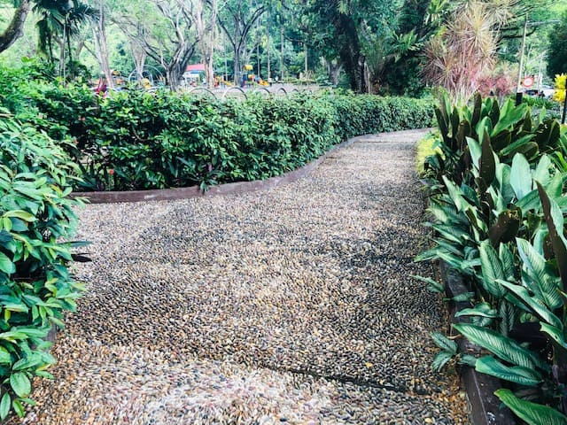 reflexology path at penang yuth park