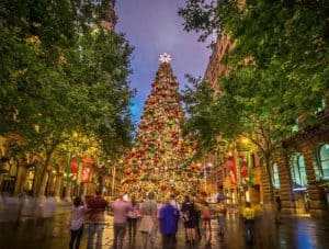 Christmas Lights Sydney