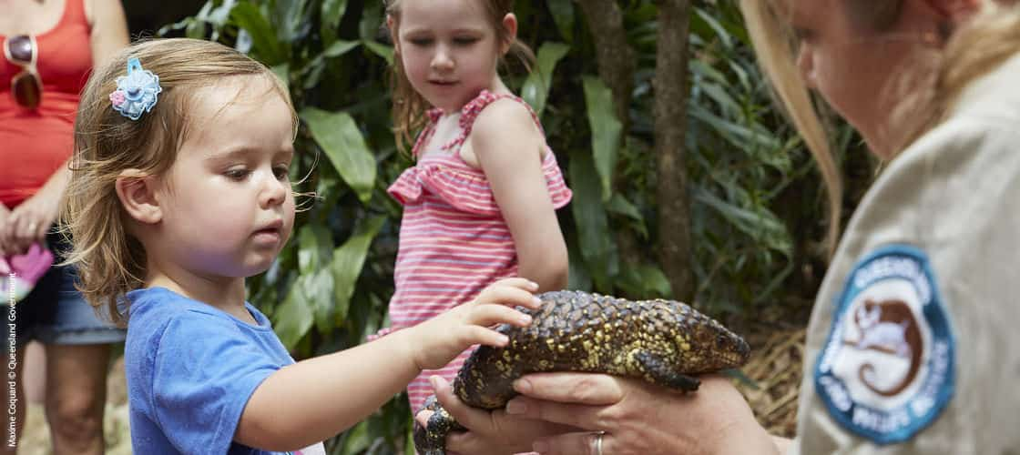 Best Zoos in Australia - David Fleay Wildlife Park