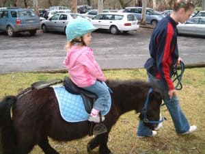 The Big Rocking Horse Pony Rides