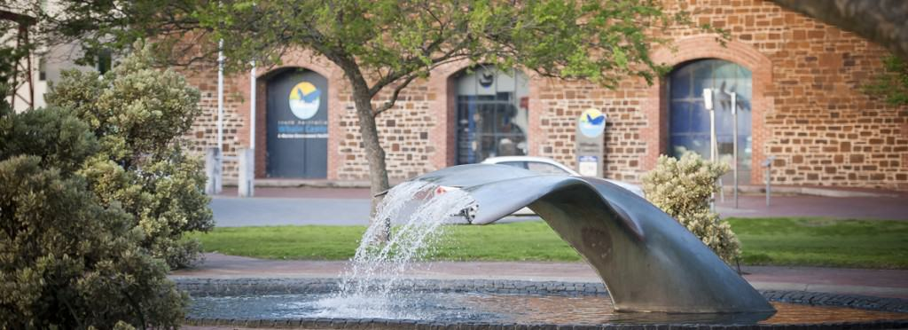 Things to do in Adelaide with kids