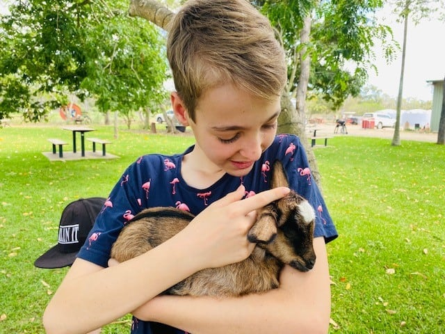 Splitters Farm cuddles with a goat